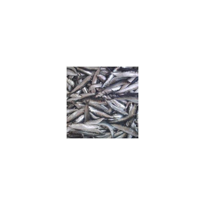 Precio Sardinillas Xoubas frescas de Galicia, 1kg