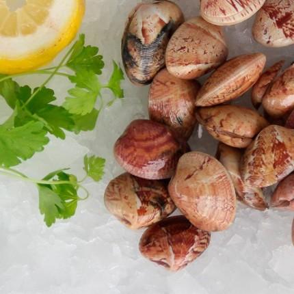 Almejas Roja - Rubia frescas de Galicia, 1kg