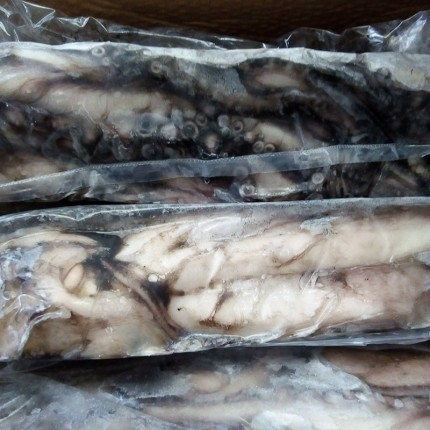 pulpo de Galicia congelado